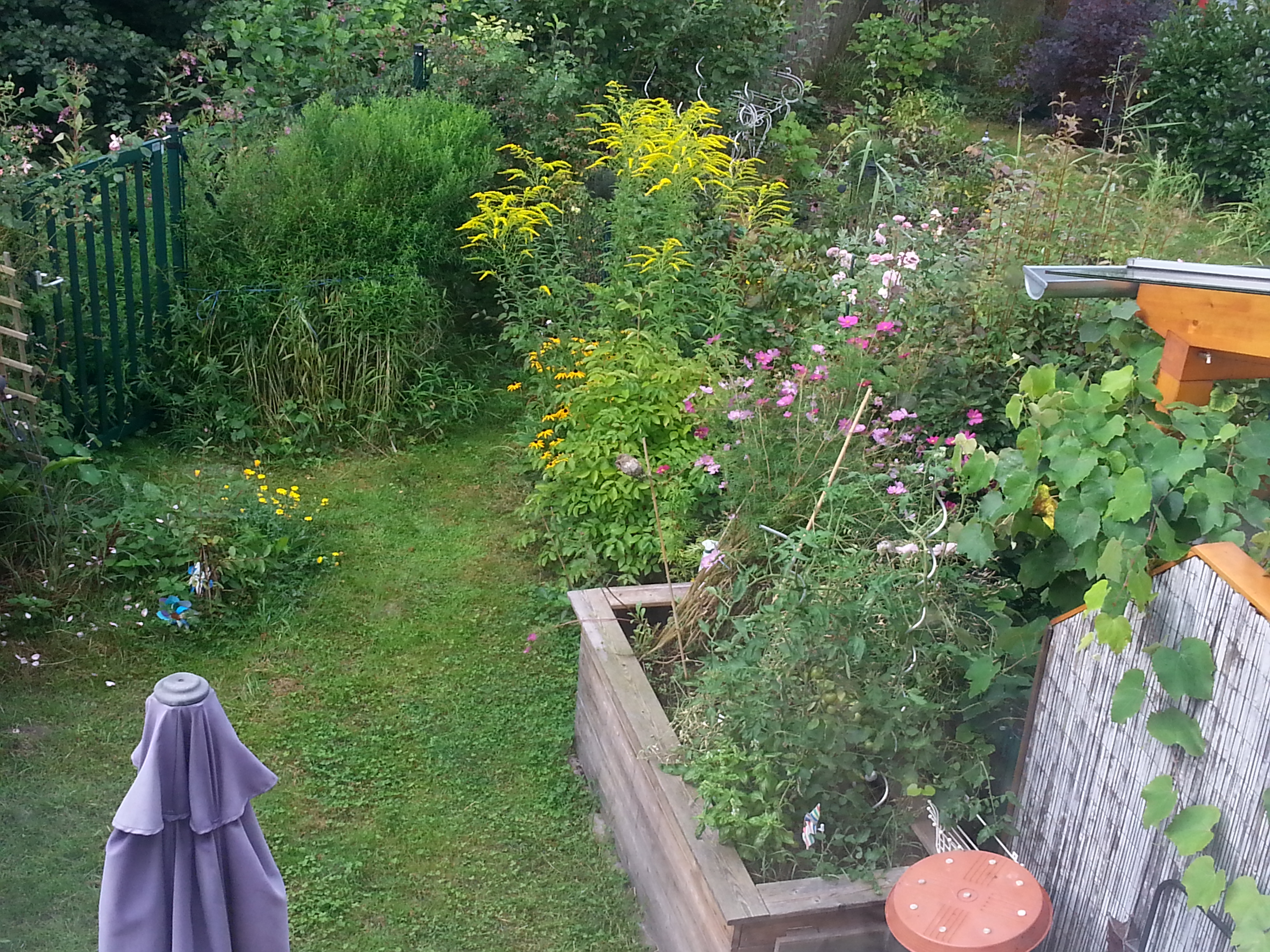My small garden – possibly the place for my bench