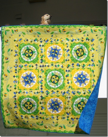 Pieced and Quilted by Di Bracey